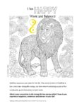 This image has an empty alt attribute; its file name is Colouring-Printable-SolePlan-1-pdf-116x150.jpg