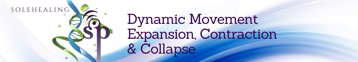 Field Dynamics expansion contraction and collapse